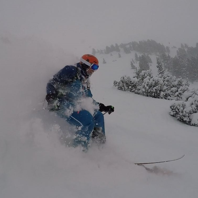 powderdude